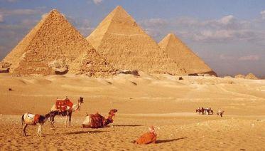 The Special Tour Pyramids - Sphinx - Sakkara + Ride Camel