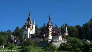Three Castles One Day Tour from Bucharest