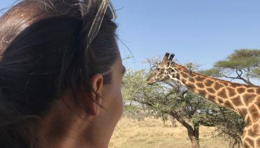 Three-Day Safari: Serengeti and Ngorongoro