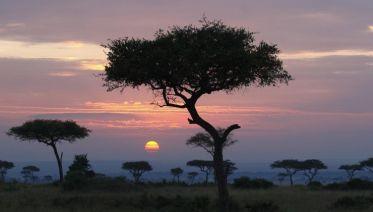 Through The Rift Valley, Keekorok Lodges - Private Tour