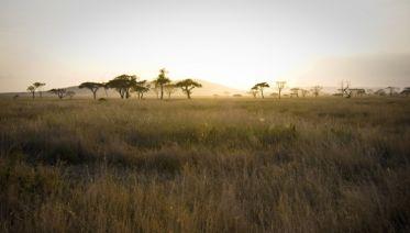 Timeless Tanzania Lodge