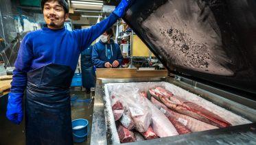 Tokyo Sushi Insider Tour (TIT)