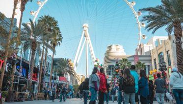 Total Las Vegas Tour: From Gaming to Food