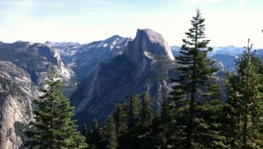 Total Yosemite Experience Day Trip