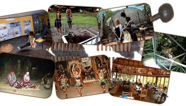 Tour To Shakaland And History Of Zulu Culture
