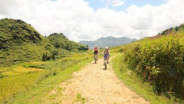 Trails Of Dalat