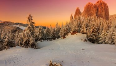 Transylvania Winter Walk & Snowshoe