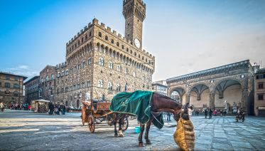 Treasures Of Florence From Lucca