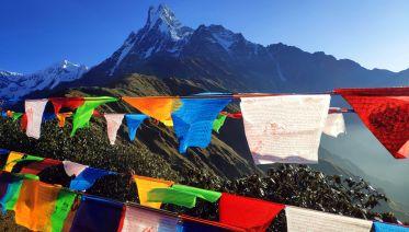 Trek Mardi Himal Base Camp