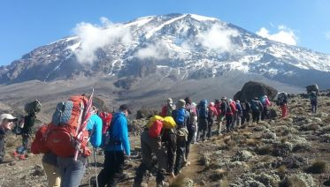 Trek Mt. Kilimanjaro: Lemosho route via Crater Camp