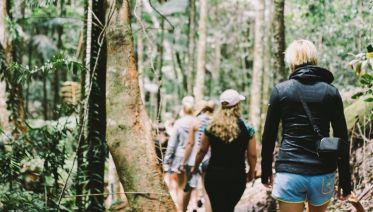 Tropical Adventure (ex. Brisbane) 2018-19