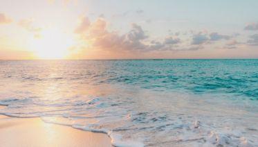 Tropical Hawaiian Paradise Escape