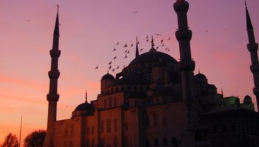 Turkey Winter Discovery