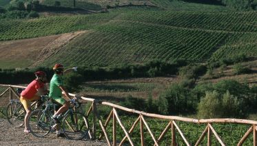 Tuscany By E-Bike From Pisa