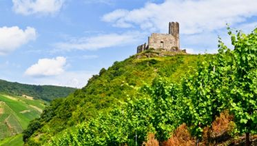 Two-River Cruise: The magic of the picturesque Moselle and the romantic Rhine Valley (port-to-port cruise)