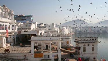 Uncover India–Delhi to Goa