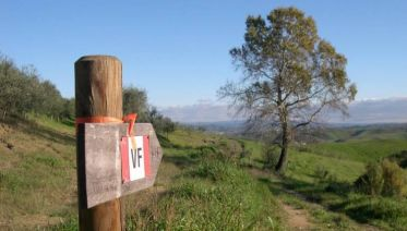 Via Francigena: Walk from Lucca to Siena