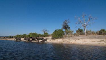 Victoria Falls & Chobe Adventure 4D/3N (from Victoria Falls)