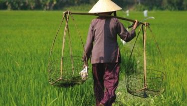 Vietnam Family Explorer