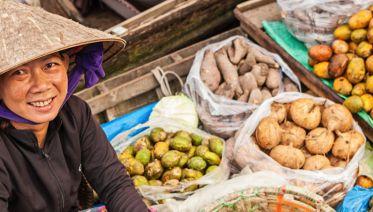 Vietnam Food Explorer