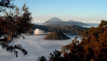 Volcanoes and Dragons of Indonesia