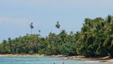 Volcanoes, Nature And Caribbean