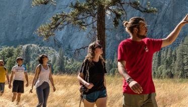 Walk Yosemite National Park