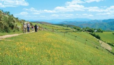 Camino De Santiago Tours