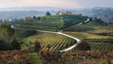 Walking the Prosecco Hills - New