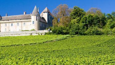 Waterways Of Burgundy- Decize - Chatillion Sur Loire