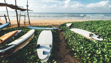 Wellness, Culture & Nature in Sri Lanka