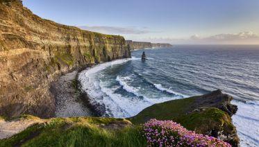 Wild Ireland