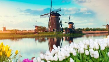 Windmills, Tulips & Belgian Delights with Bruges