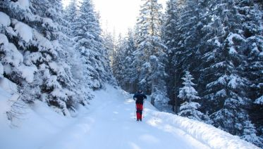 Winter Walking in the Austrian Tyrol