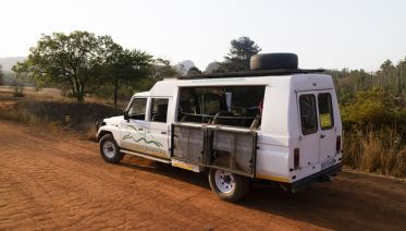 Zululand And Kruger Wildlife