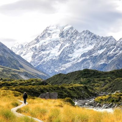 New Zealand Tours 2020 2 Best Tours and Trips in Dunedin 2019/2020 – Compare Prices