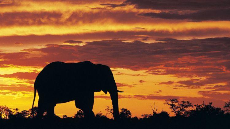 10 Days Kenya and Tanzania Budget Camping Safari