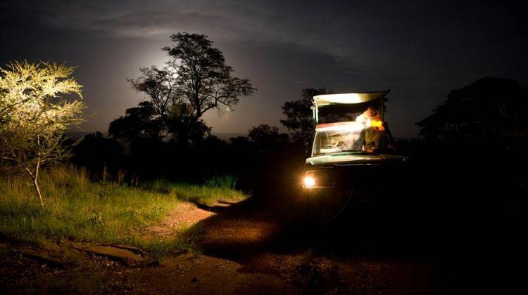 11 Days Complete Tanzania Safari Package Mwanza to Arusha