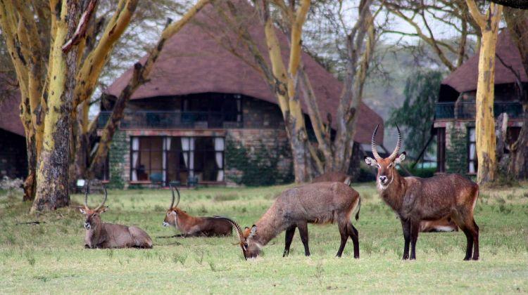 12-day Kenya Classic
