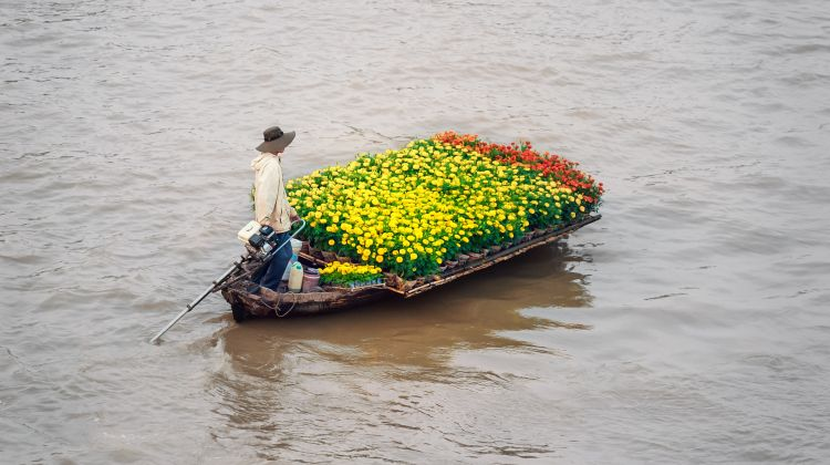 2-Day Mekong Delta Tour