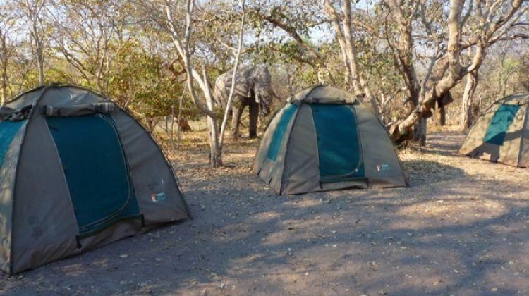 2 days and 1 Night Camping Safari