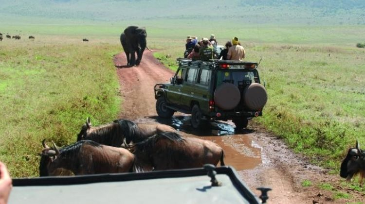 2 Days Safari - Tarangire and Ngorongoro
