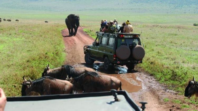2 Days Safari - Tarangire and Ngorongoro