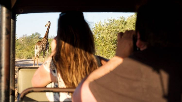 3-day Classic Kruger Park Safari