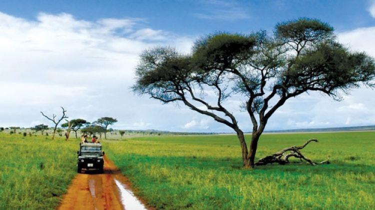 3 Days African Safari