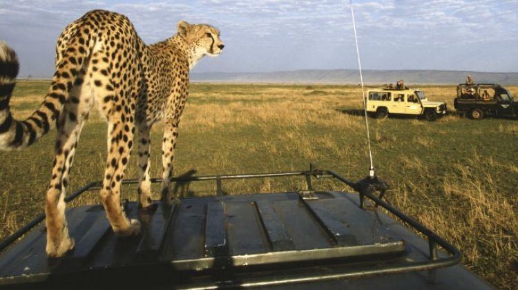 3 days Maasai Mara Safari
