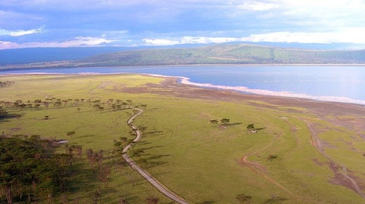 4-Day Classic Tanzania Safari