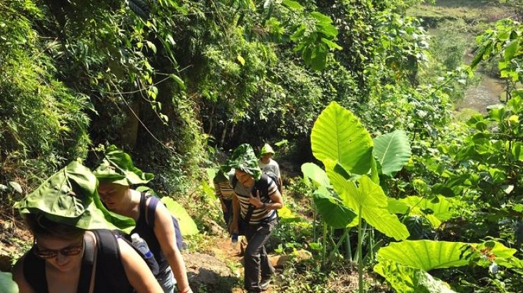 4-day Jungle Trekking In Ba Be National Park