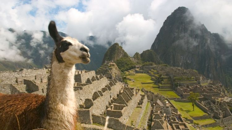 4 day Lares trek to Machu picchu