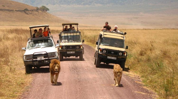 4 Days Safari - Manyara, Ngorongoro and Serengeti